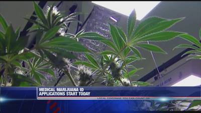 Medical marijuana ID applications start today in Arkansas
