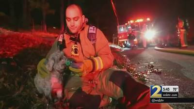 Man says dog saved his life during house fire