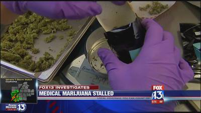 A year later: Medical marijuana stalled in Arkansas