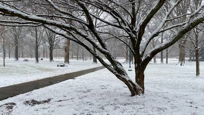 Mid-Southerners wake up to snow falling across the Mid-South