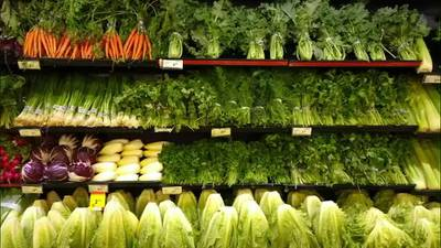 Program looks to bring fresh food to 750 Memphis families
