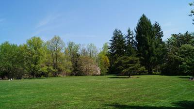 Wolf River Conservancy to host 16th annual tree planting