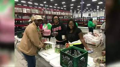 AKA Mid-South chapters recognize 113 years of service with joint celebration