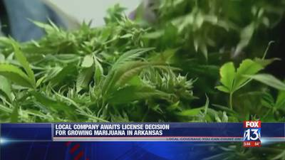 Licenses to be handed out for medical marijuana use in Arkansas Tuesday